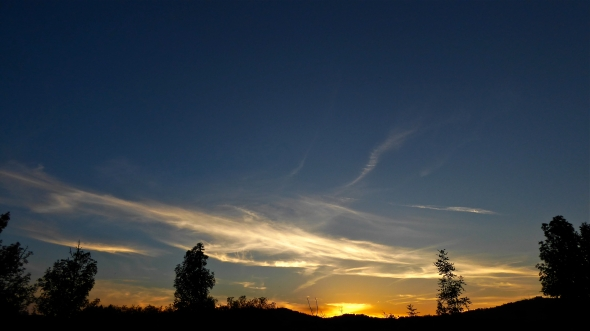 Western sky after sunset with silhouetted trees and luminous clouds