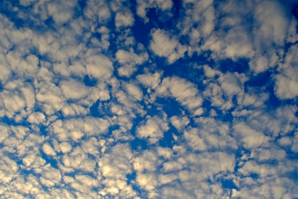 white cottony clouds interspersed in deep blue sky