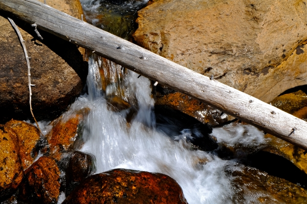Whitewater flowing under bleached log and over rocks in creek