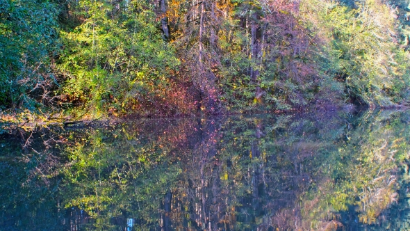 Autumn forest with red, orange, yellow and green leaves reflected in pond