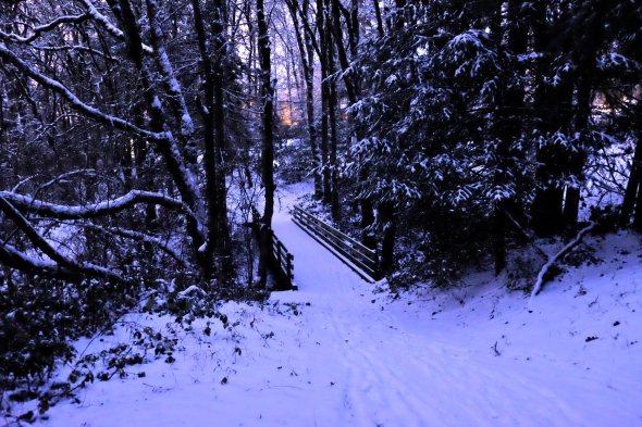 Snowy woods with footbridge at center leading away toward evening glow in sky
