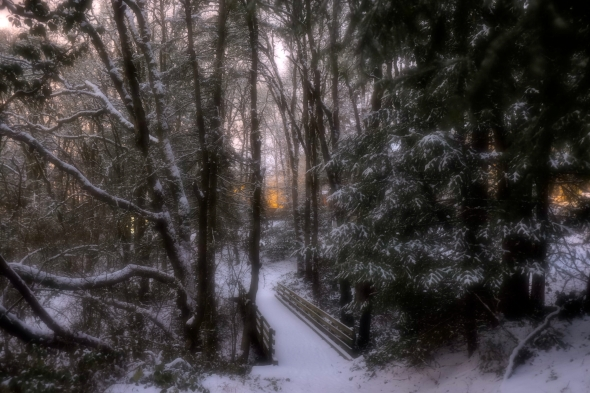 Softly focused snowy woods with footbridge at center leading away toward evening glow in sky