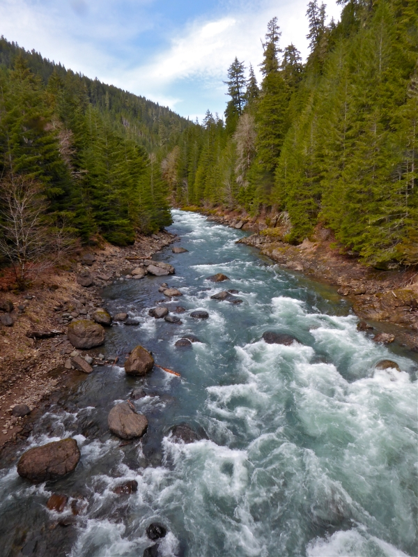 Rocky river with whitewater rapids flowing between steep hillsides of evergreen and blue sky