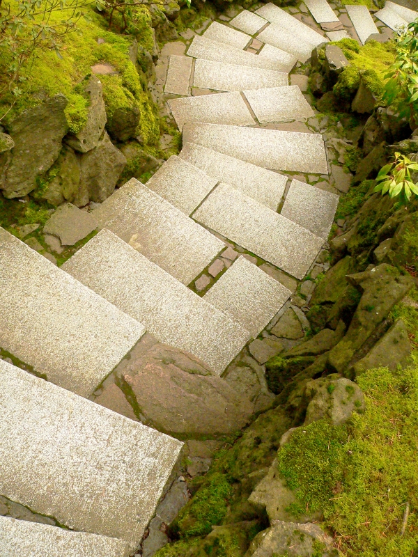 Winding rectangular steps leading downward between mossy rocks