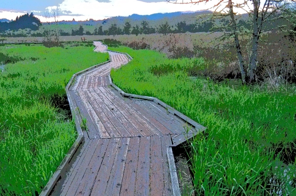 Boardwalk stretching away through green grass of marsh toward forest and blue hills in distance