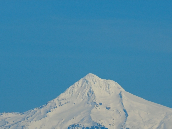 Snow-covered Mt. Hood, Oregon, and blue sky