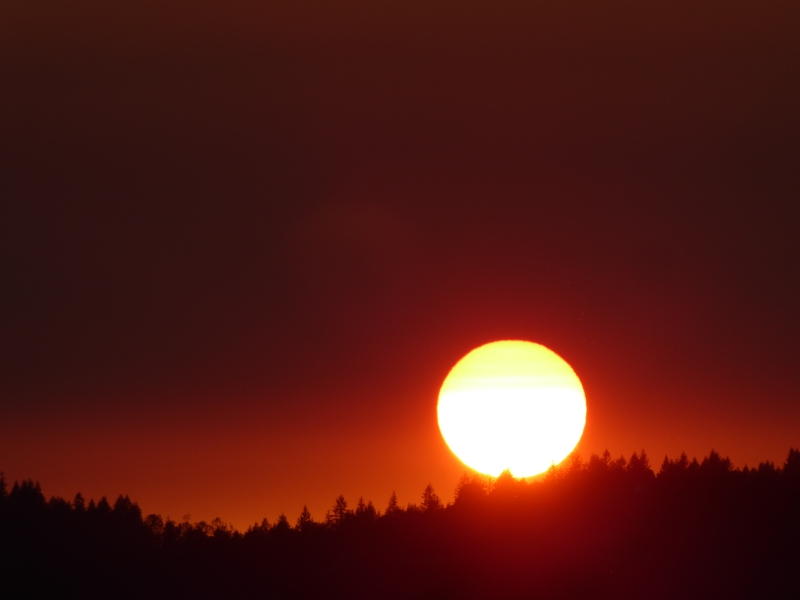 Deep orange sky and yellow sun setting over forested horizon