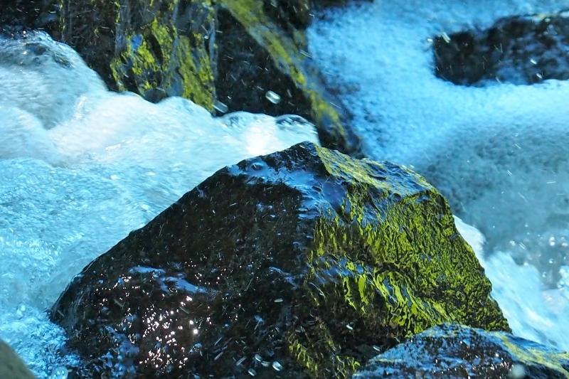 Rushing whitewater and rocks