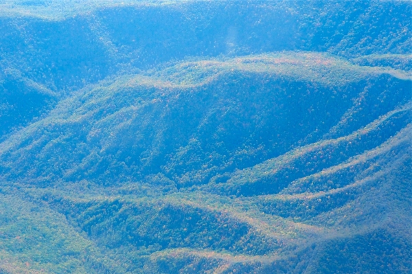 Forested Mountain Ridges and Valleys