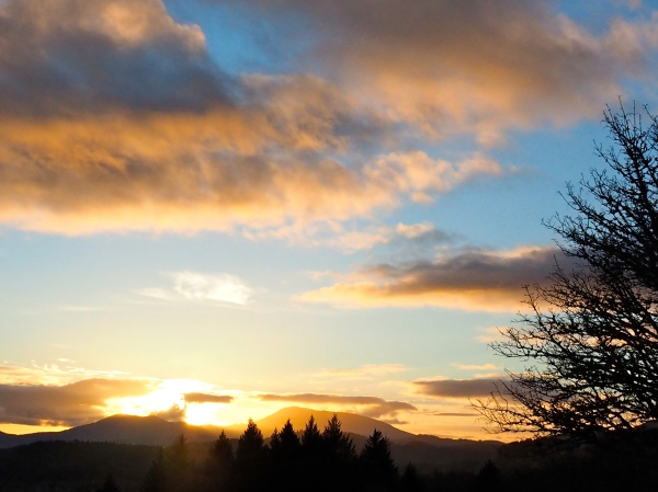 Sun setting over mountains with orange and yellow clouds and silhouetted tree