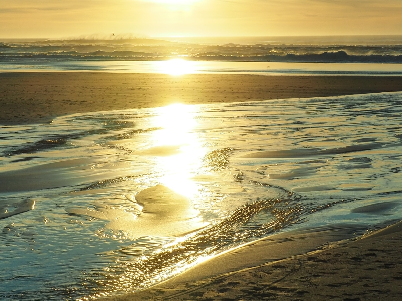 Golden Light on Beach and Surf from Setting Sun