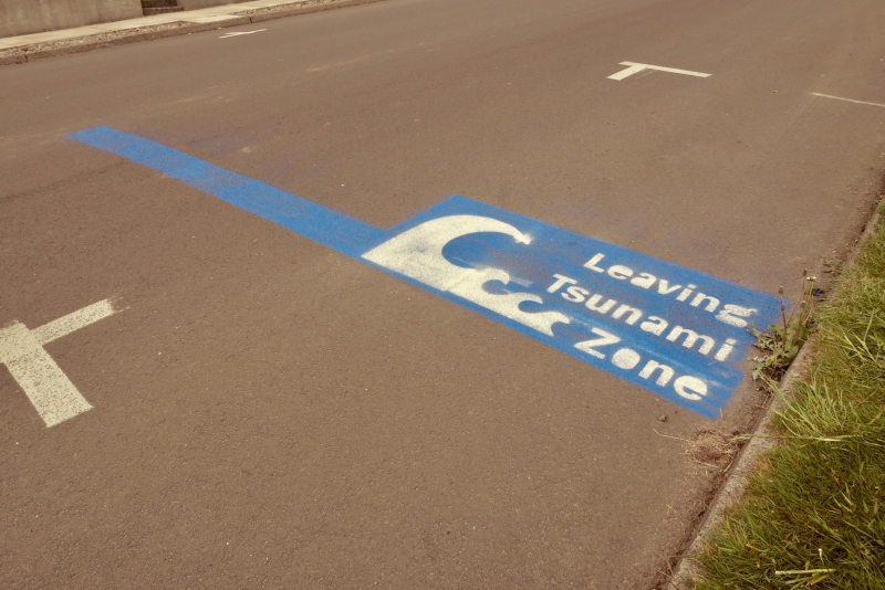 "Parking space marked ""Leaving Tsunami Zone"""