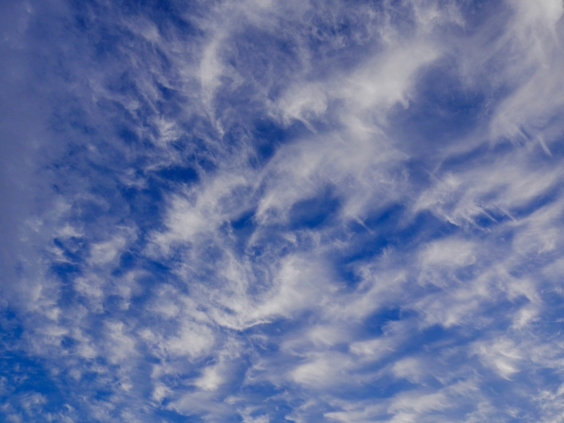 Curly high clouds in deep blue sky