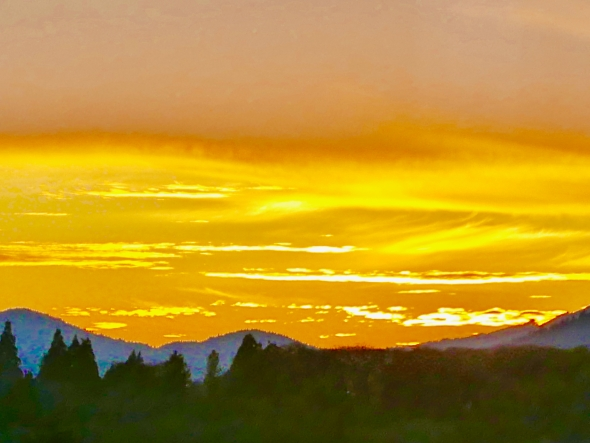 Orange sky over blue mountains and evergreen forest