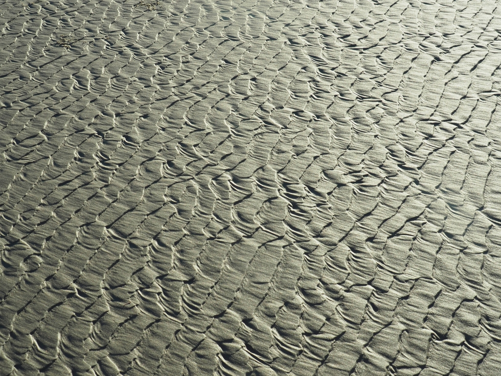 Many parallel ripple marks in golden beach sand