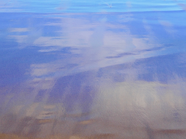 Blue and gold reflections of sky on sandy beach