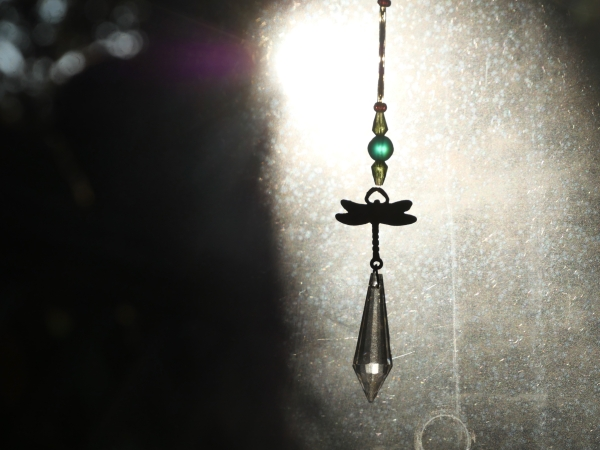 Pendant with dragonfly and prism hanging in window