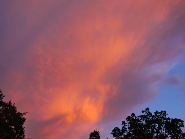 Orange clouds and blue sky