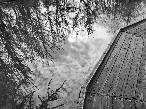 Wooden boardwalk and reflections of trees in marsh