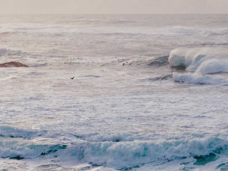 Foamy surf with big waves