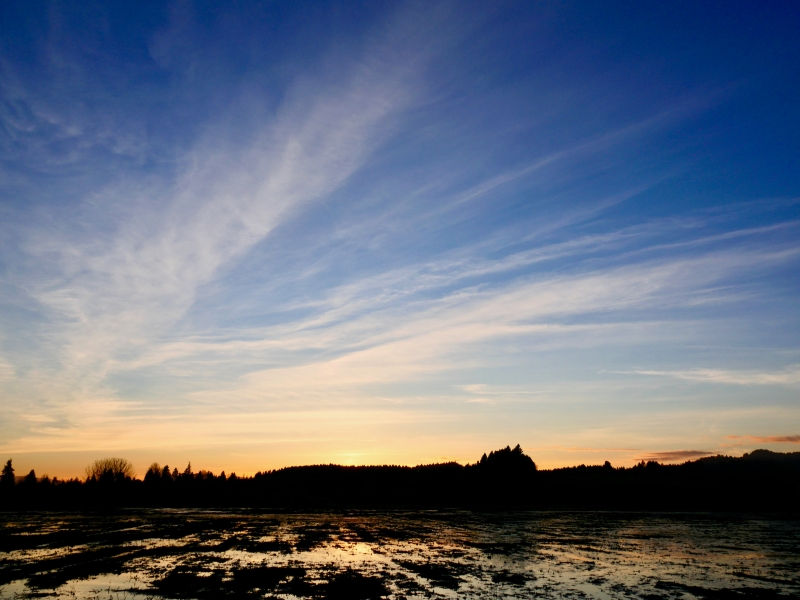 Bue sky and white clouds after sunset in wetlands