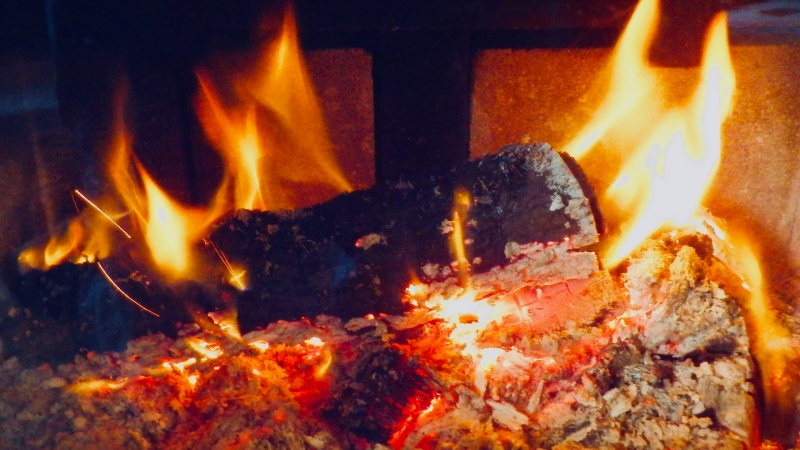 Logs burning in woodstove