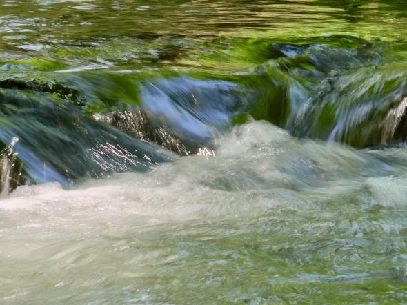 Riffle in Stream