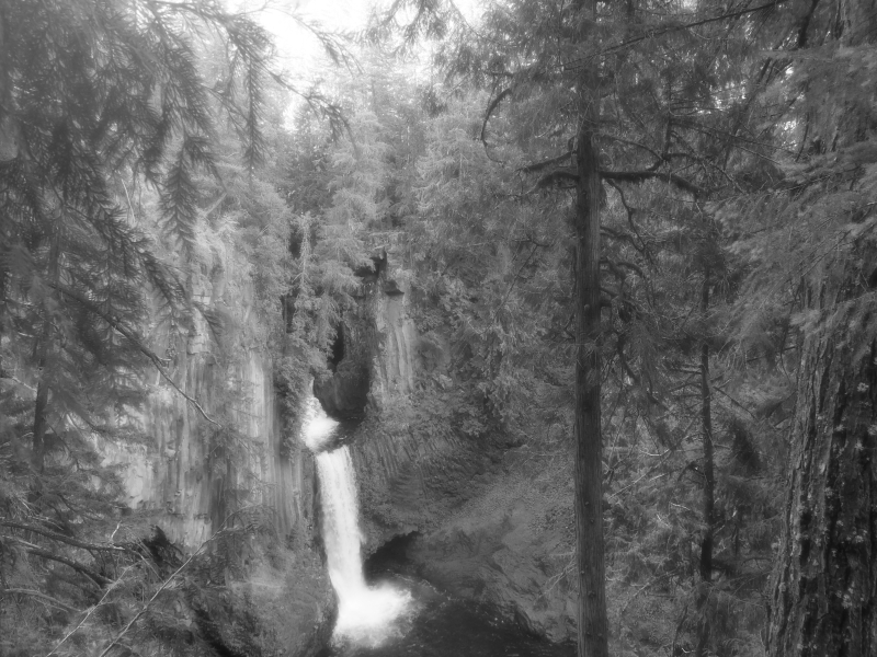 large waterfall in forest