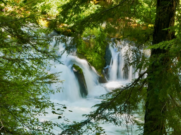 Waterfall and green foliage