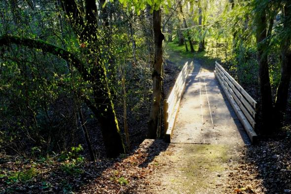 DSCF1608-Bridge-CorvallisOR-1Mar2021