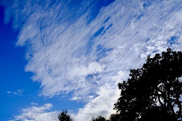 High white clouds in blue sky